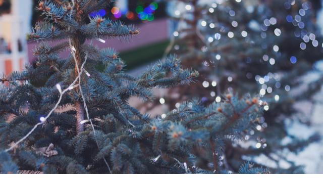 Photo by Kate Zaidova via unsplash.com