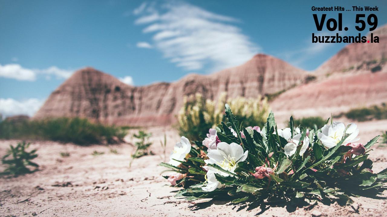 Photo by Jordan Whitt via unsplash.com